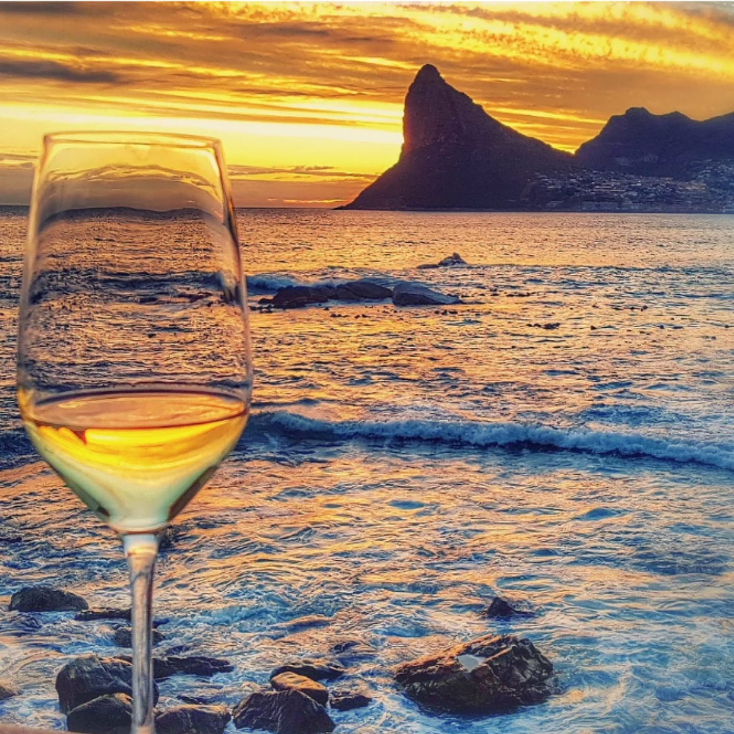 wines-of-the-world-south-africa
