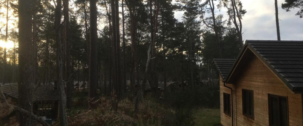 Mindfulness Holidays at Center Parcs
