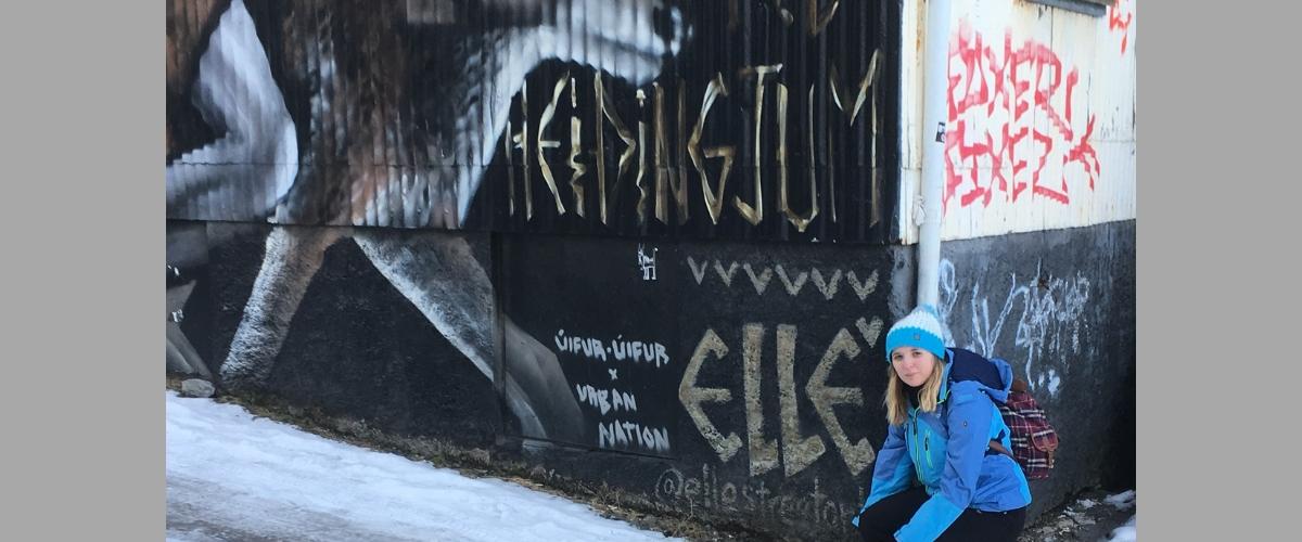 Reykjavik: On a Shoestring